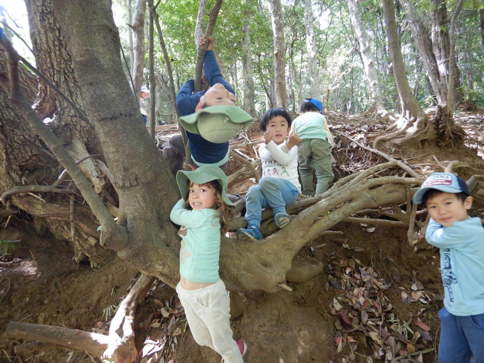2021年度めーぷるキッズ新3歳児・新4歳児入園説明会のお知らせ