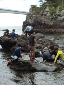 2018夏の冒険キャンプ/海あそびキャンプのお知らせ