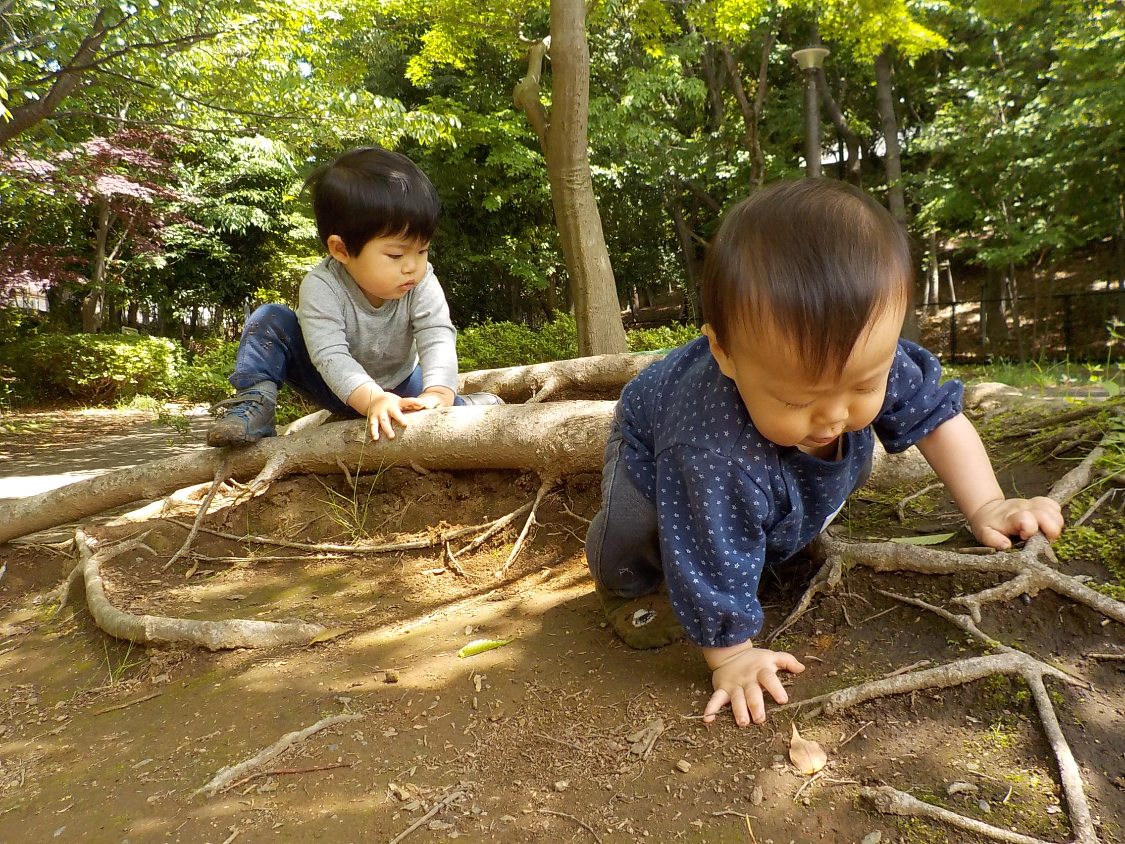 2021年度 もあな保育園 新2歳児 入園説明会のお知らせ