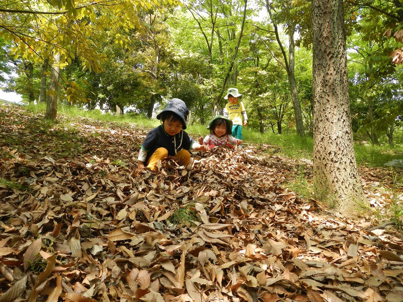 平成30年度めーぷる保育園【追加募集】入園説明会のお知らせ