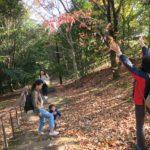 おやこ森のようちえん11月_秋晴れの緑道